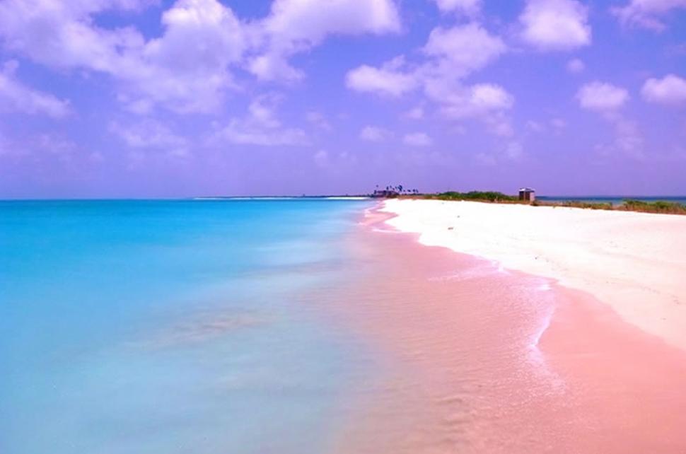 Las Bahamas Arena color Rosa