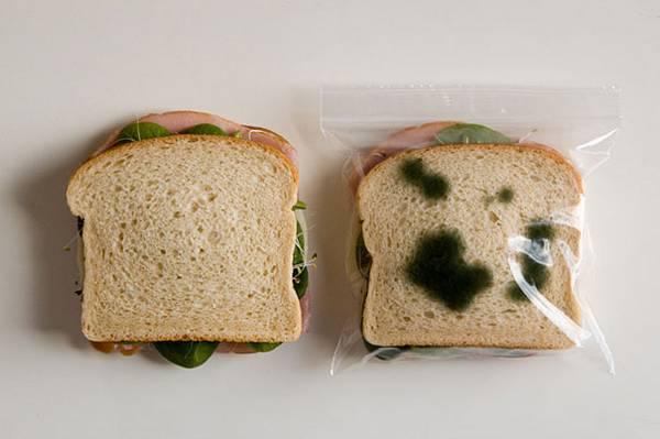 bolsa anti robo de comida