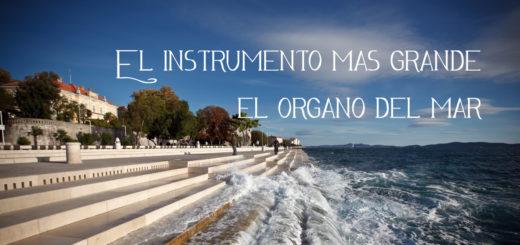 Organo del mar
